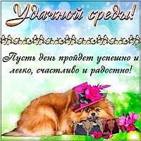Удачной среды открытка поздравление