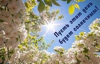 Весенних цветов вам