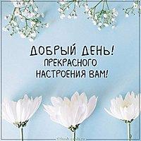 Виртуальная открытка добрый день прекрасного настроения вам
