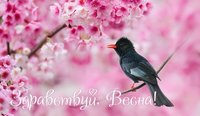 Здравствуй весна
