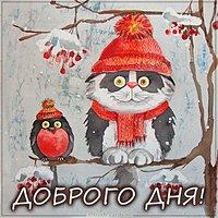 Зимняя картинка доброго дня прикольная смешная