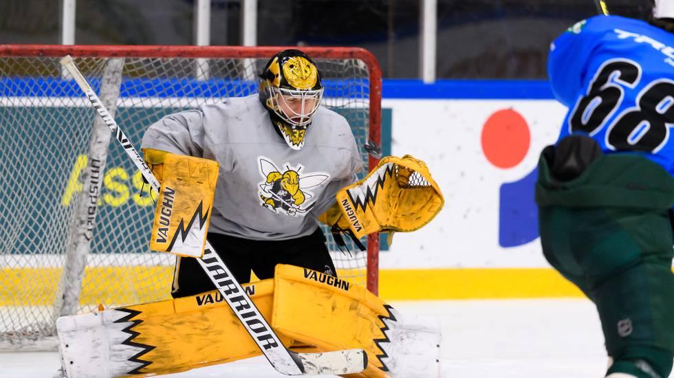 Efter fem år i USA – svenske keepern klar för klubb i Hockeyallsvenskan