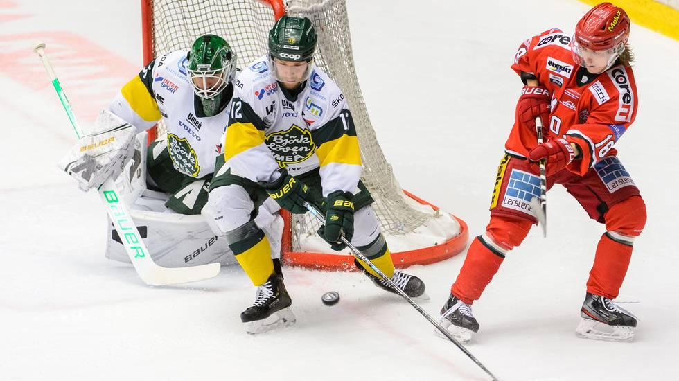 Hockeyallsvenskan får dryga 17 miljoner kronor - så fördelas det mellan klubbarna