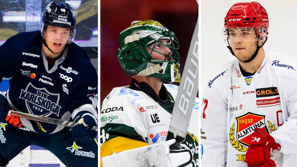 Nilsson: Sex allsvenska värvningar som imponerat på mig