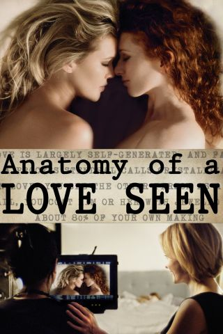 Reseña de Anatomy of a Love Seen