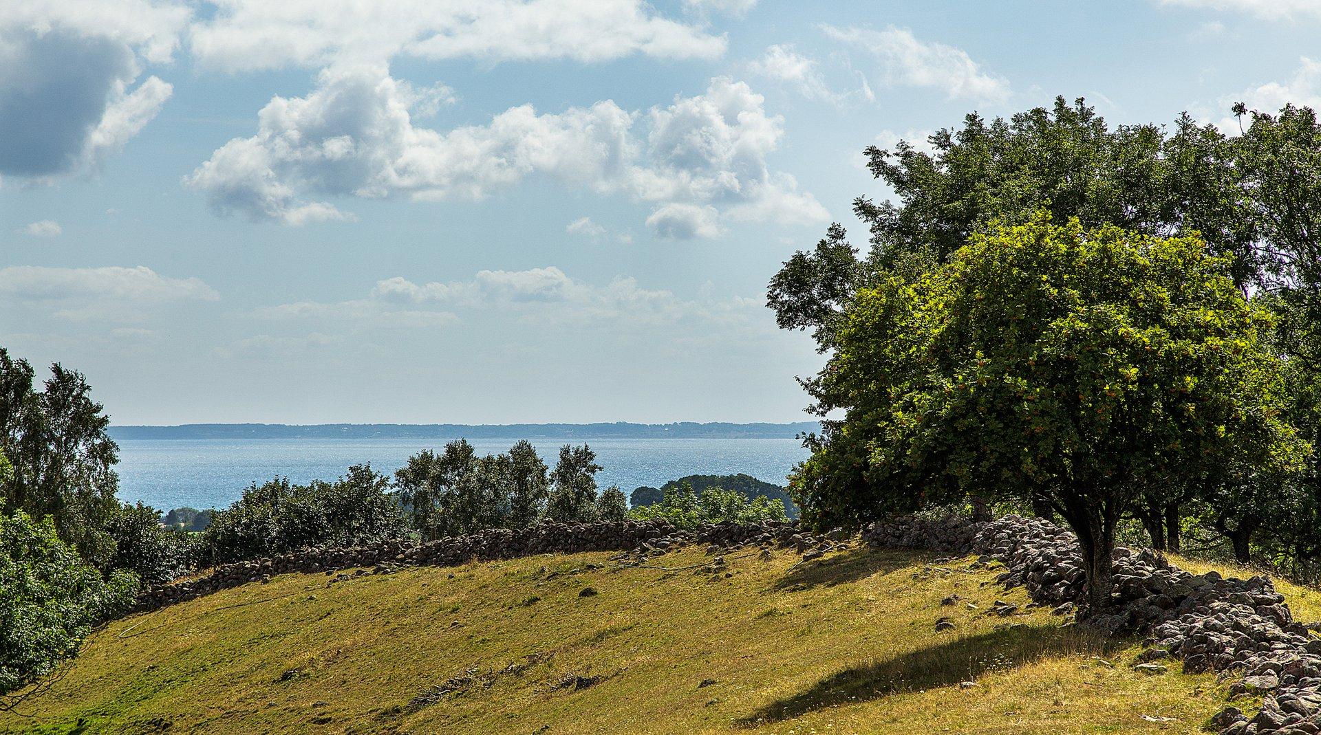 Natur i Båstad