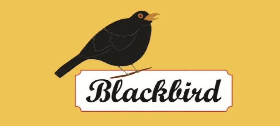 Blackbird, Ballycotton