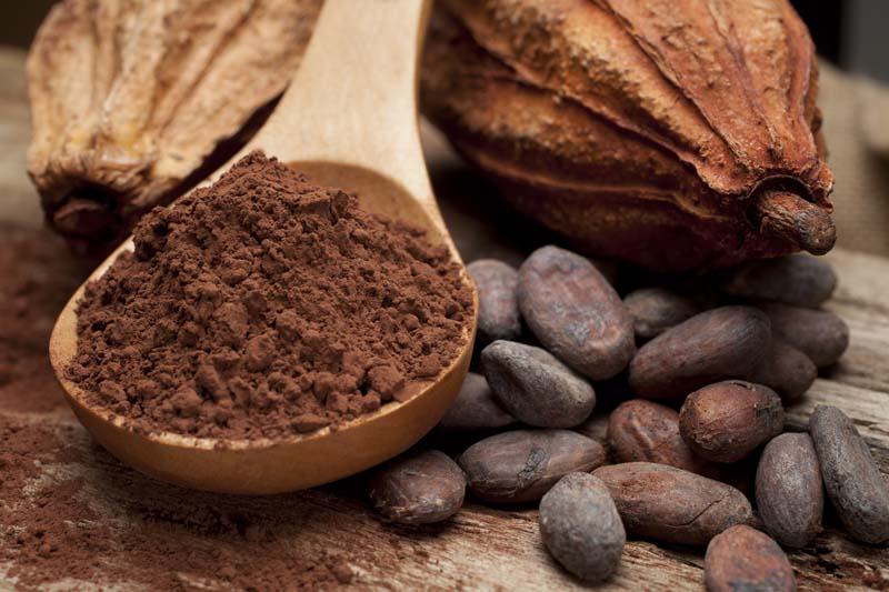 cluster-cacao-cioccolato