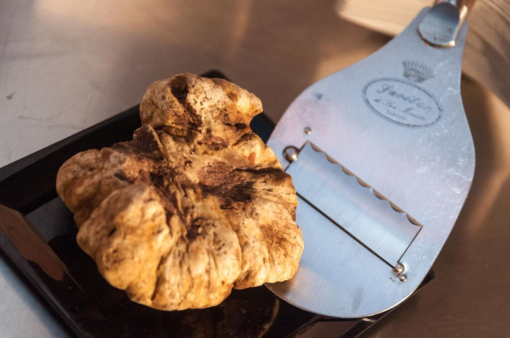 tartufo san miniato