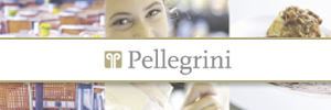 Pellegrini 2016