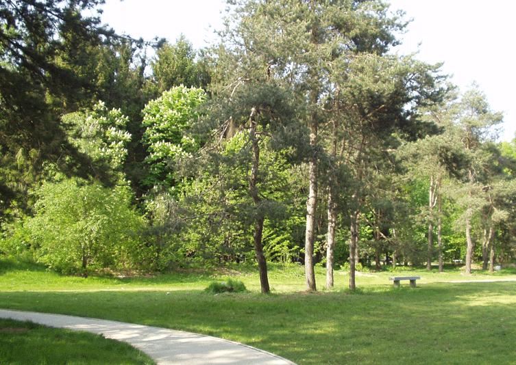 Parco Altomilanese