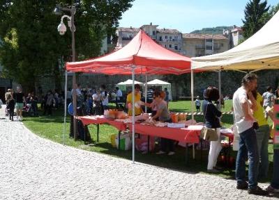 Parco Besozzi Benioli