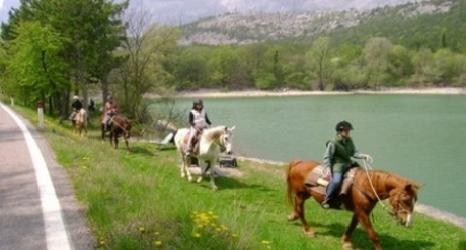 Vieni nel mondo del cavallo