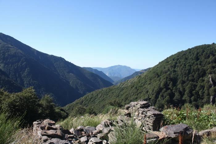 Campi wilderness ad impatto zero