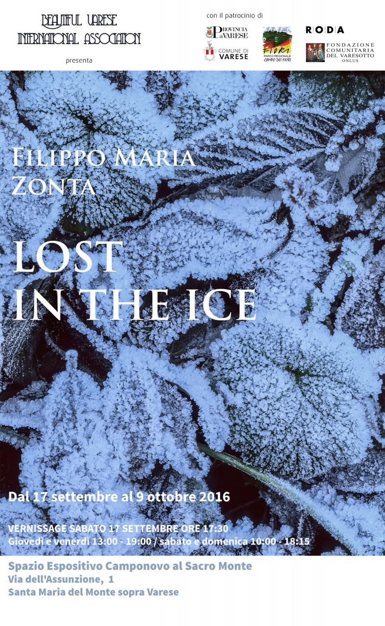 Lost in the ice