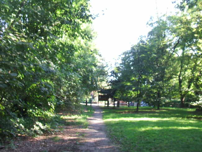 Parco dei Boschi Ronchi