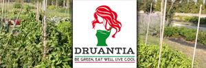 Druantia_Mobile