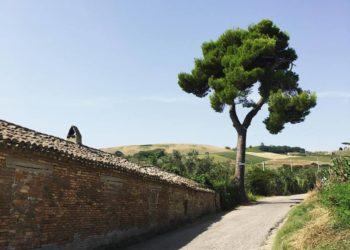Continua il viaggio di Salvatore Ponzo, architetto parabiaghese di 32 anni