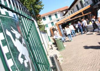 Sagra del Bue Grasso San Domenico 09 - Sempione News
