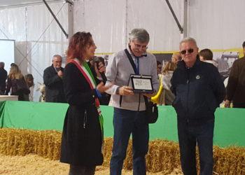 410 Fiera San Martino Inveruno 22 - Sempione News