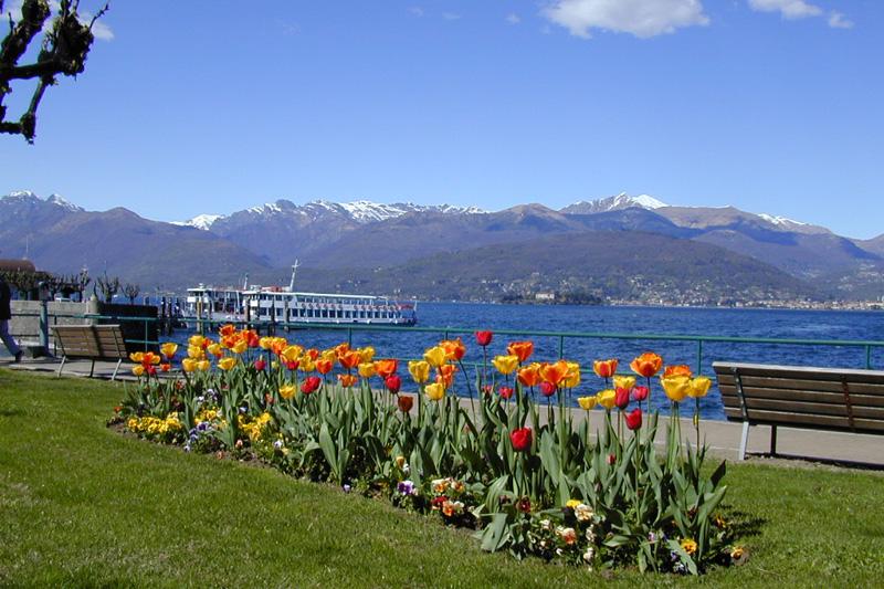 Bildergebnis f?r baveno lago maggiore primavera