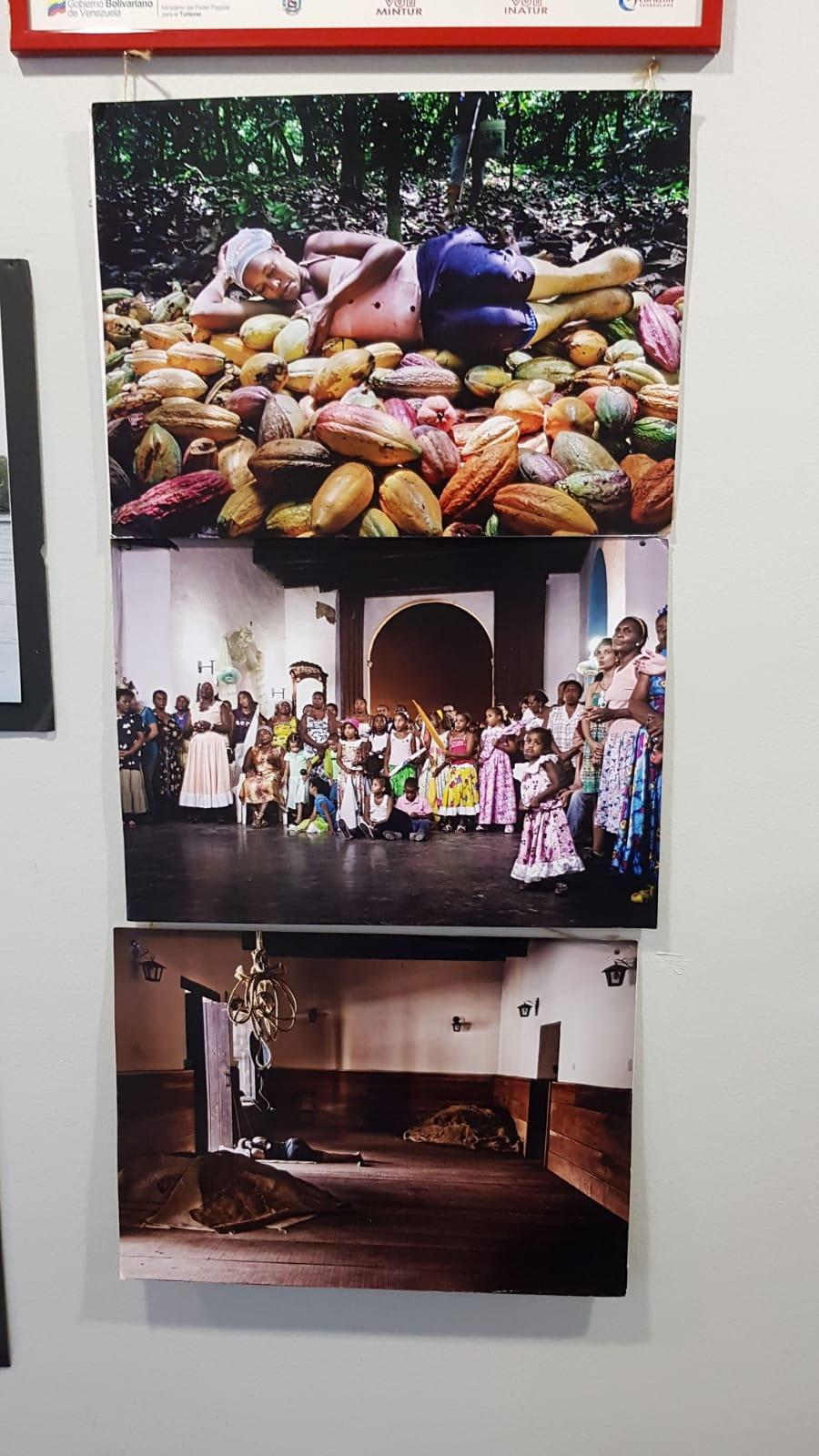 Cacao venezuela