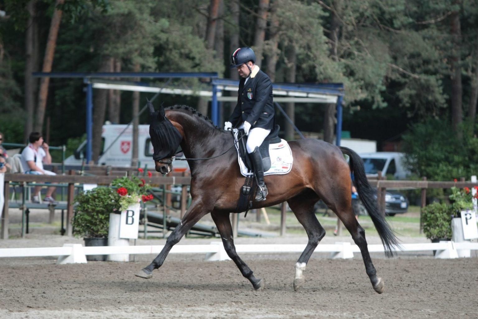 Equitazione Somma Lombardo (2)