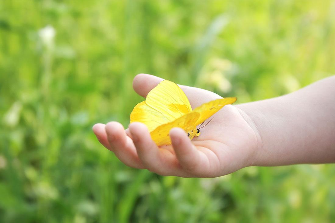 bambini farfalla - associazione debra italia
