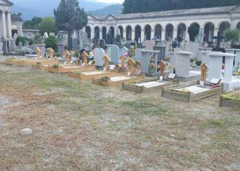 cimiteri verbania
