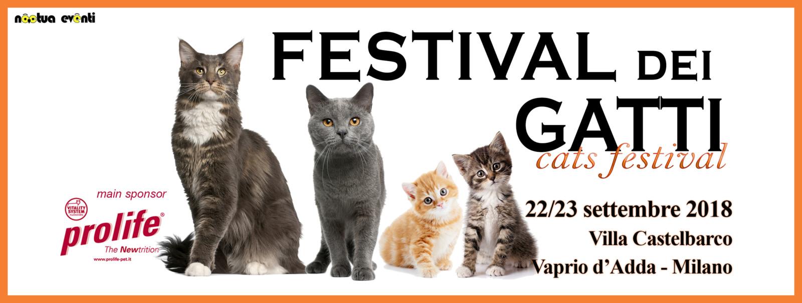 Il Numero Di Gatti Che Vivono Querciacb