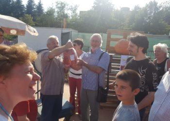 Salice Legnano, fiera del disco, zucche, risottata 27 - Sempione News