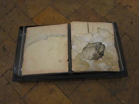 libro d'artista carnago (2)