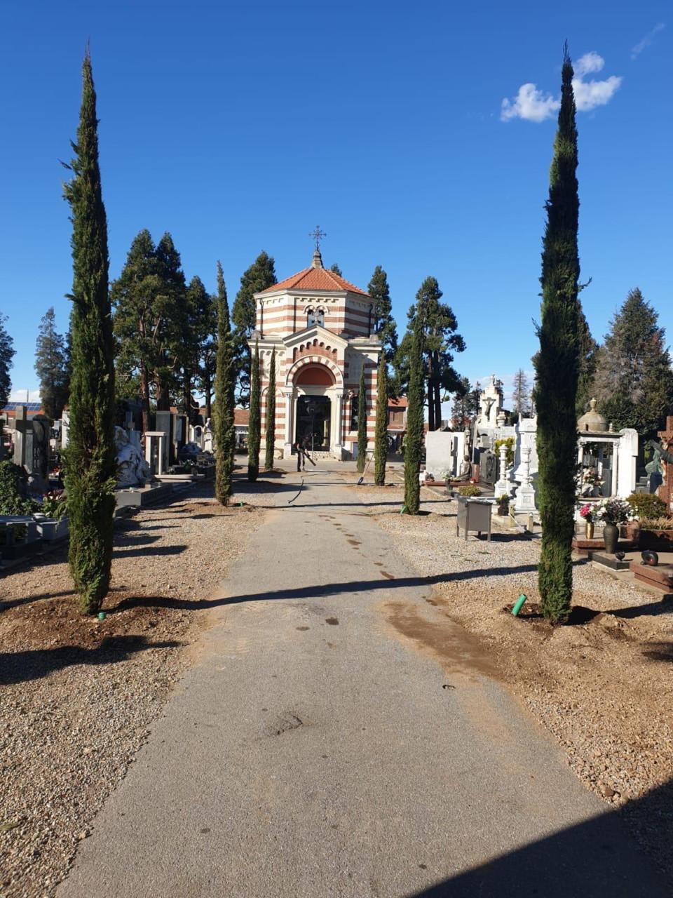 cipressi cimitero busto 3