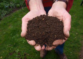 compost e mano