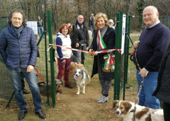 nuova area cani castellanza 2019-sempionenews 2.#
