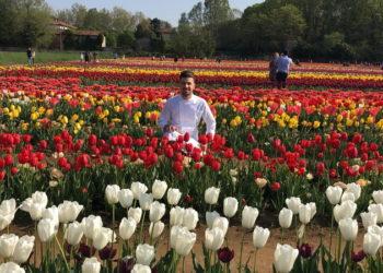 Tulipani Italiani serenamente e Moschella 63
