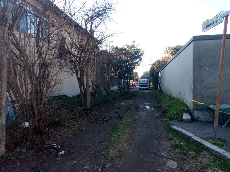 abbattimento alberi via Mestre- Sempione News (5)