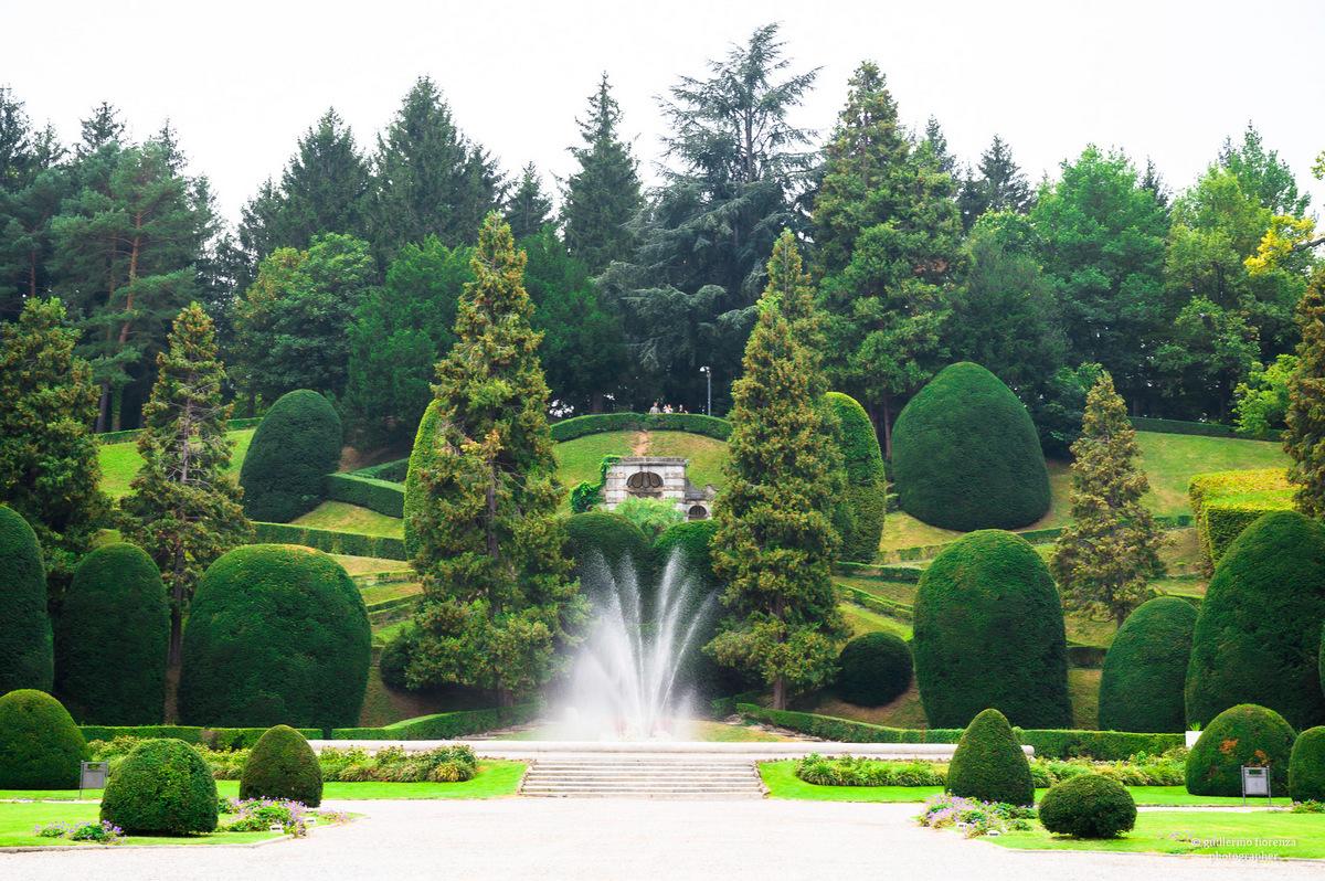 Giardini Estensi Nature Urbane 2020 Alberi Maestri Guillermo Fiorenza (2)