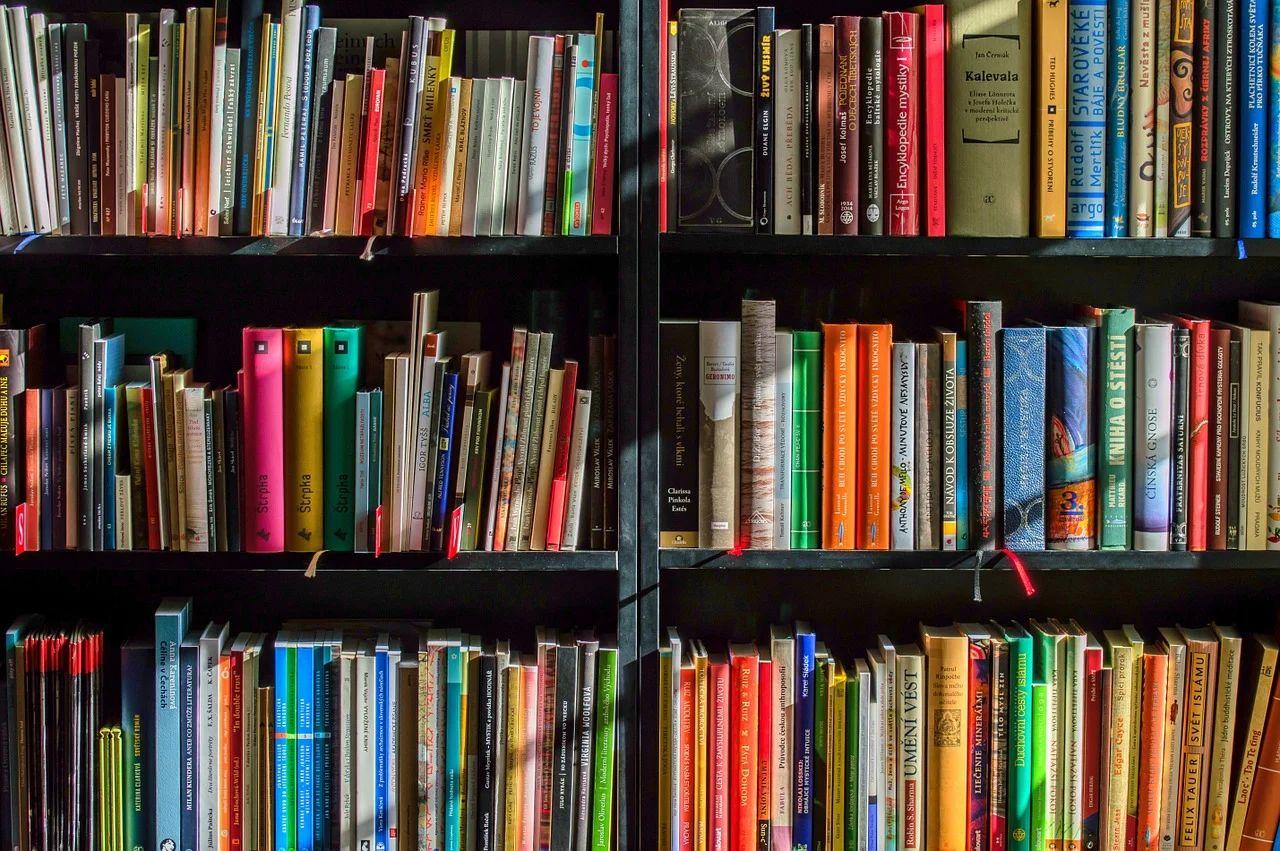 Libri-Biblioteca (1)