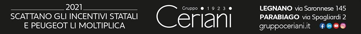SKIN Top – Gruppo Ceriani – Desktop