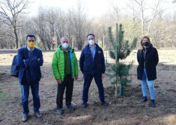 1 davide-turri-laura-rogora-lorenzo-radice-mario-paganini-parco-alto-milanese-sempione-news-8