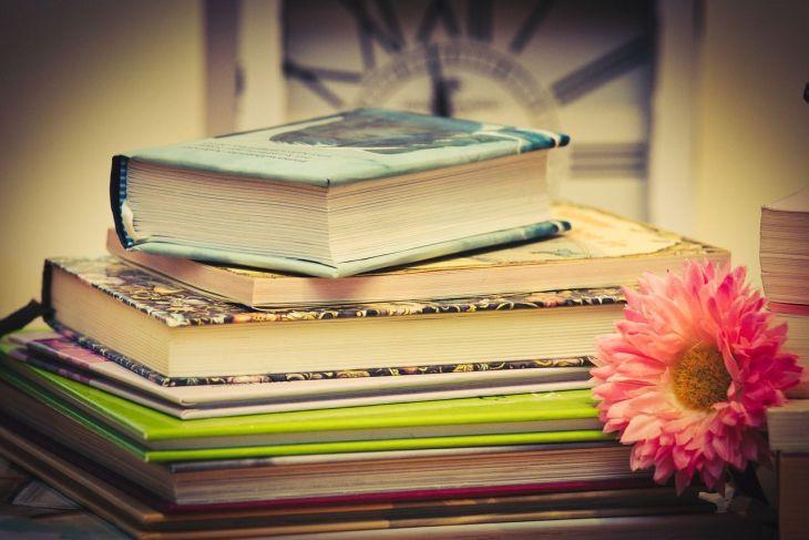 Libri e librerie (3)