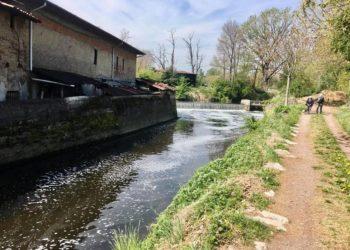 fiume olona schiuma