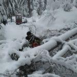 Odstraňovanie snehu s stromov spadnutých na trať Oravskej lesnej železnice