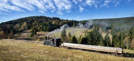 Oravská lesná železnica zatvorená