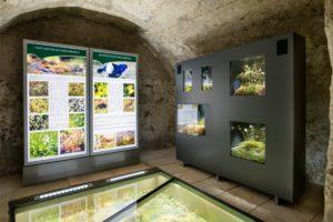hrad expozícia rašeliniská oravy interiér