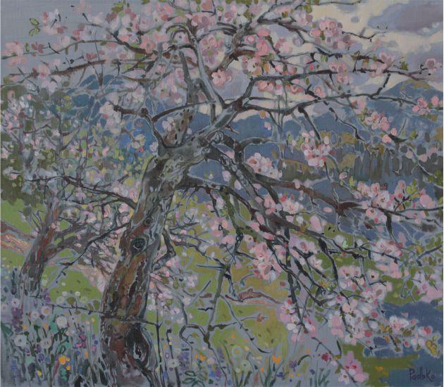 Весна в Карпатах1